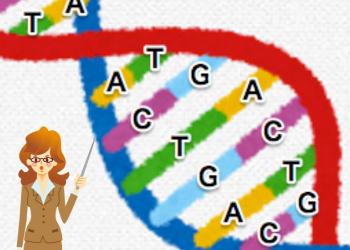 子供の能力を知れる遺伝子検査