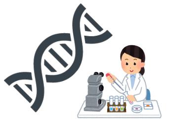 能力の遺伝子検査
